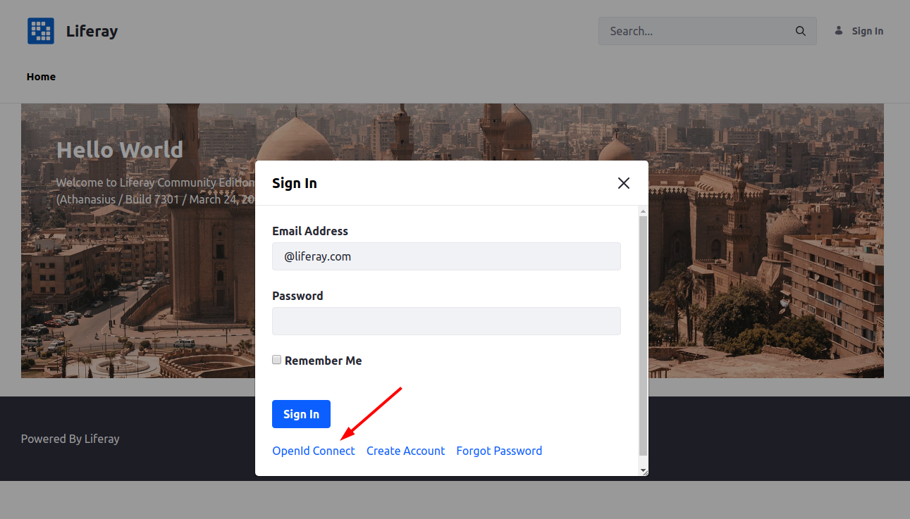 Liferay Sign In — OpenId Connect